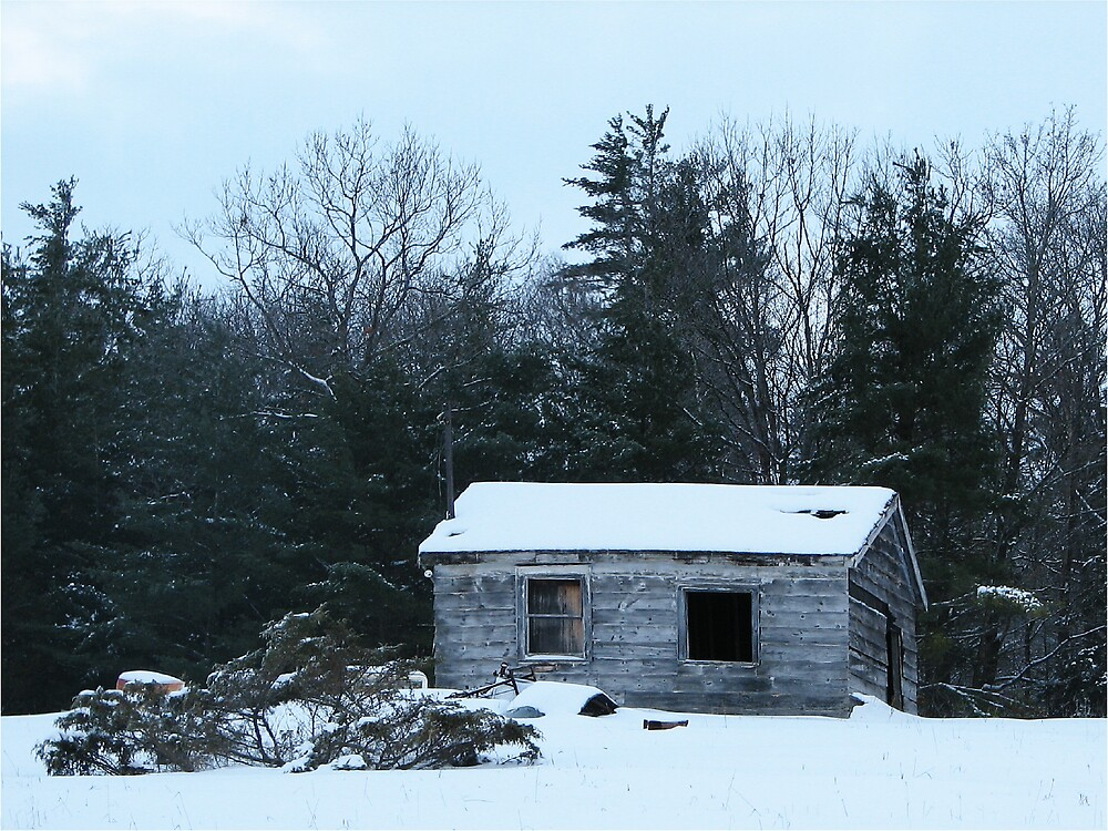 winter desolation by aathomas