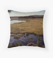 Hailstorm Creek Marsh Throw Pillow