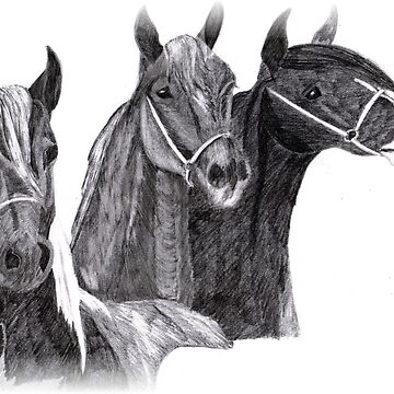 The three kings by moonstone