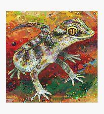 Bynoe's gecko painting - 2012 Photographic Print