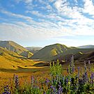 Lindis Pass Evening by kevin smith  skystudiohawaii