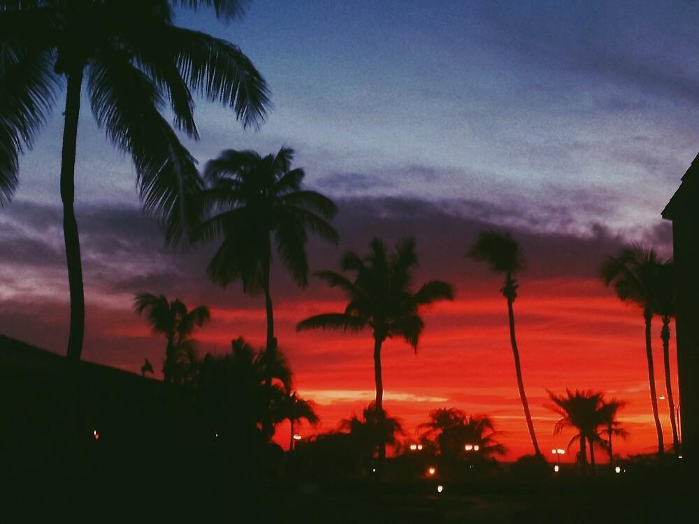 Bahamas Sunset by marv922