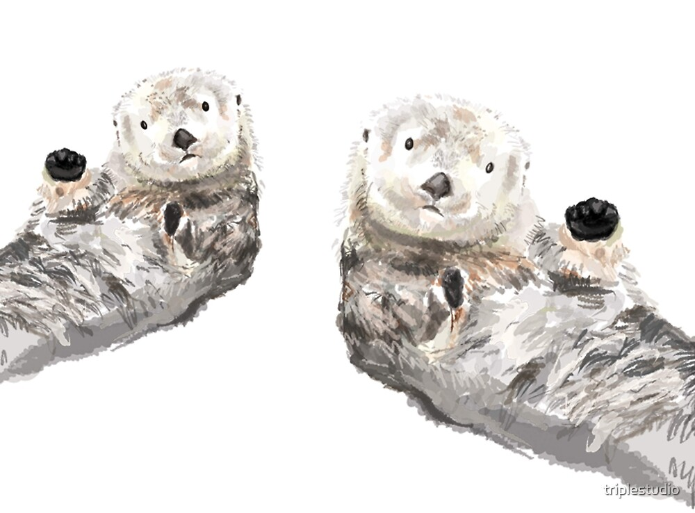 Sweet Loving Sea Otters Couple by triplestudio