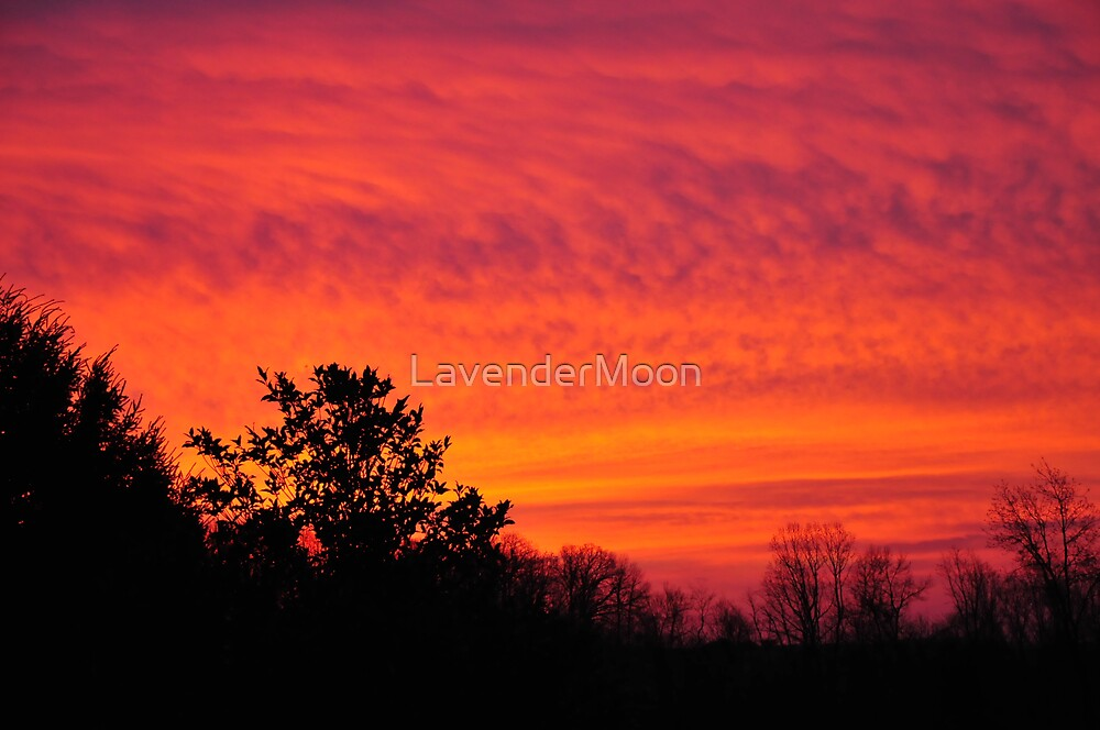 Purple/Orange Sunrise by LavenderMoon