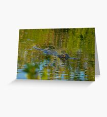 """""""Cruising the Glades"""" Greeting Card"""