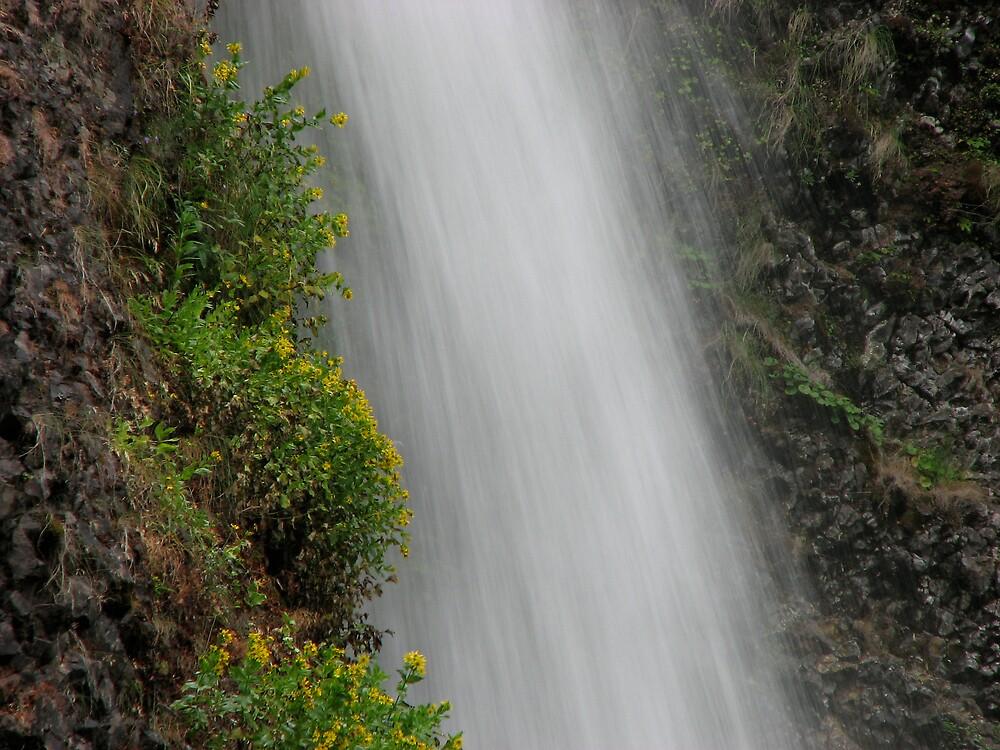 Rushing Water by schmelzp