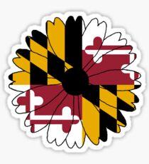 Maryland Black Eyed Susan Sticker