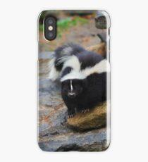 Curious Skunk iPhone Case
