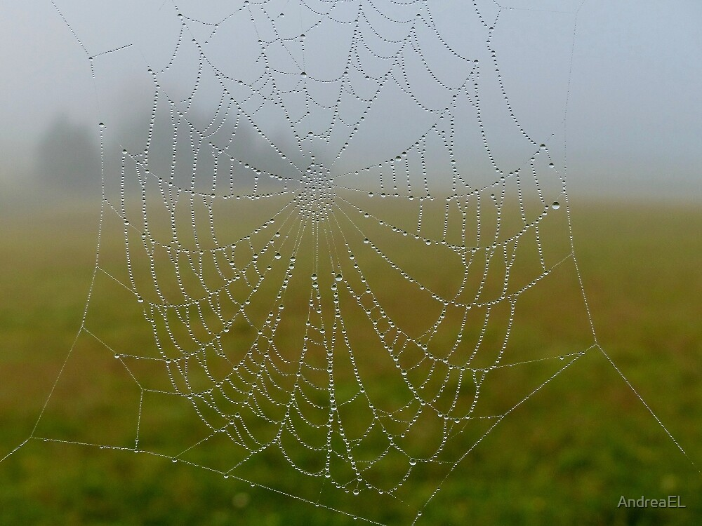 A Home In The Mist... - Web - NZ by AndreaEL
