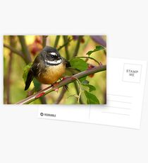 A Life With Love Will Have Some Thorns - Fantail - NZ Postcards