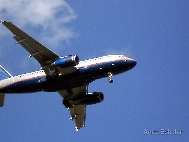 Jumbo Jet by Anita Schuler