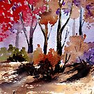 Sunset in the Bluegum bush by Maree Clarkson