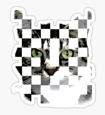 cat checkers Sticker