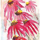 Daisy festival by Maree Clarkson