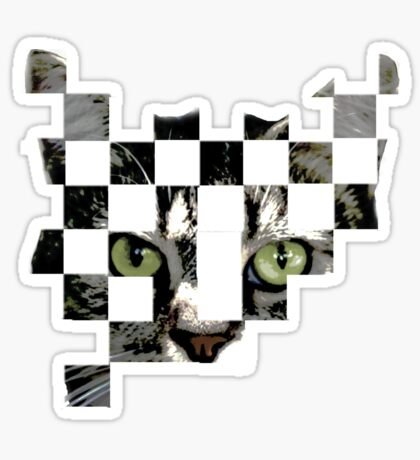 cat checkers 2 Sticker