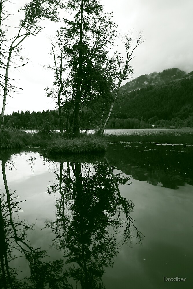 Tree reflected in water by Drodbar