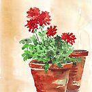 Geranium or Pelargonium? by Maree Clarkson