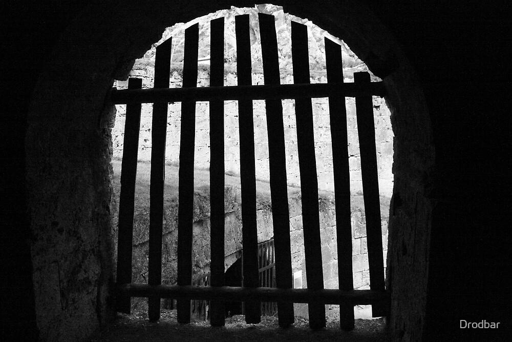 Dungeon gates by Drodbar