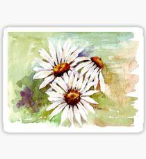 Daisies - the gardener's friend Sticker