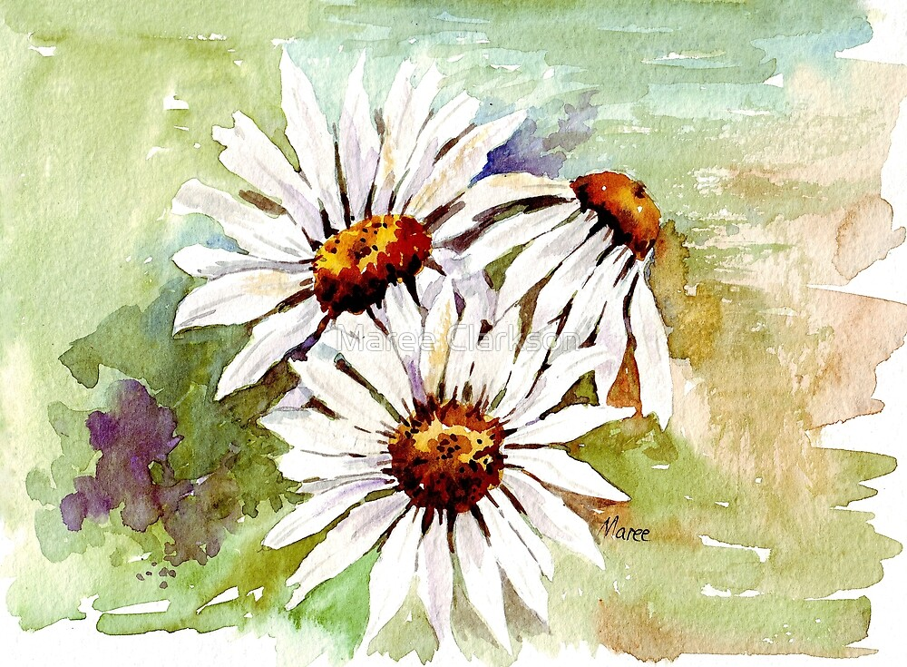 Daisies - the gardener's friend by Maree Clarkson