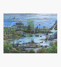 Tranquil Water Views.  Landscape Art Print,  limited edition by Vicki Alder Photographic Print