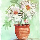 Pink Mums by Maree Clarkson