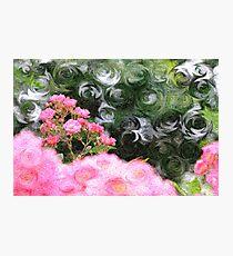 Painterly Pink Wild Roses with Green White Swirls Photographic Print