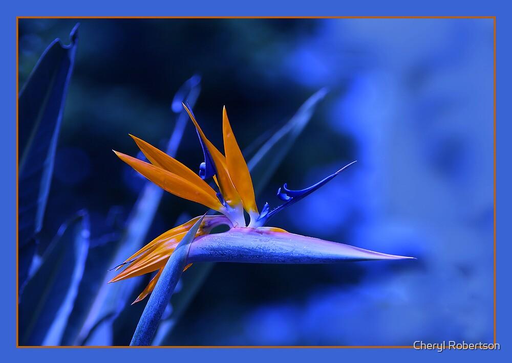 Blue Paradise by Cheryl Robertson