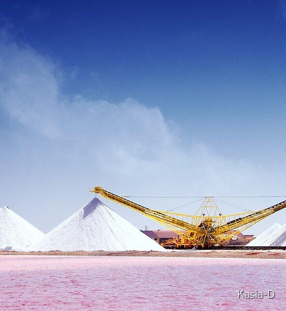 Worth Their Salt by Kasia-D