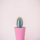 Cactus in pink pot by artsandsoul