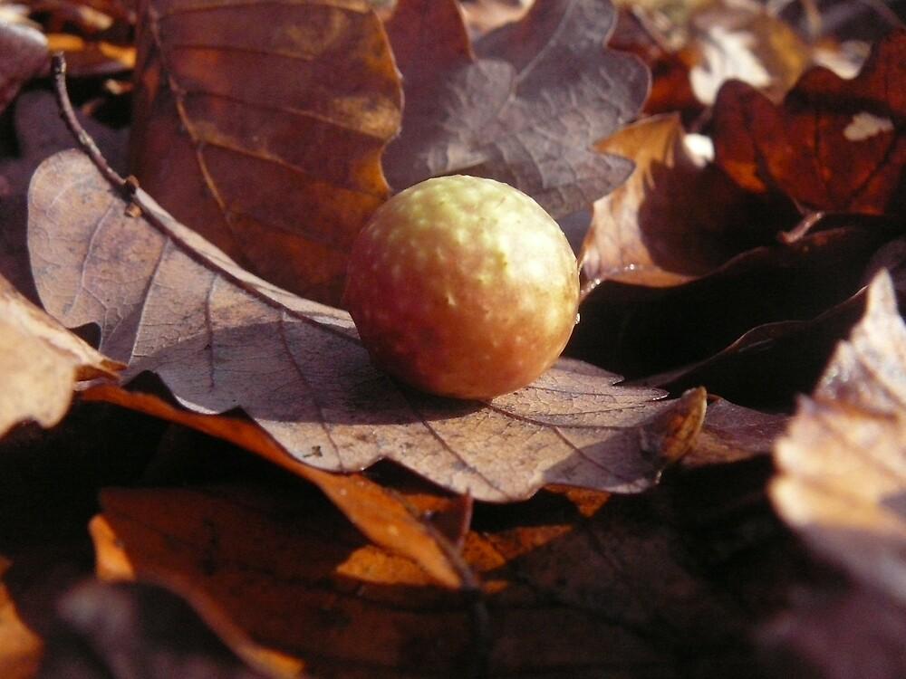Autumns organs by JoannaCrea