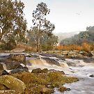 0339 In morning light - Barwon River by Hans Kawitzki
