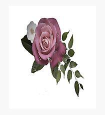 Relative Roses Photographic Print