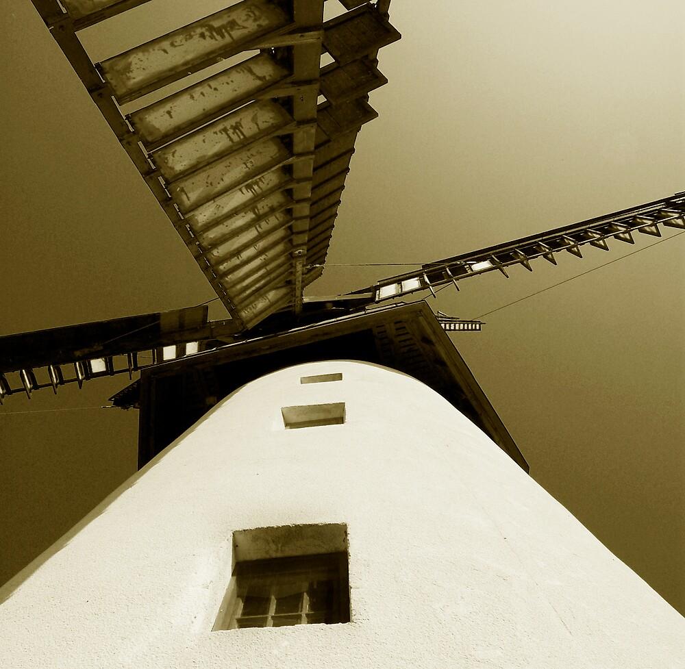 Skerries Mills Windmill 2 by ragman