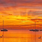 0345 Golden Dawn - Corio Bay by Hans Kawitzki