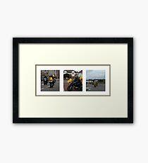 Pooh Bear Rides Again Framed Print