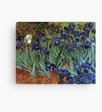 Irises -Vincent van Gogh Canvas Print