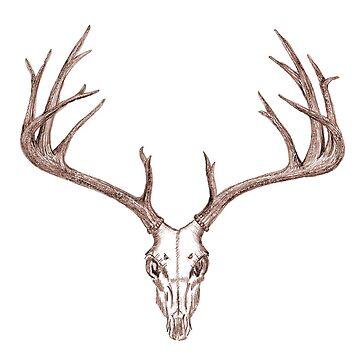 Kilmallie Trails - Deer Skull (brown) by fkmmck