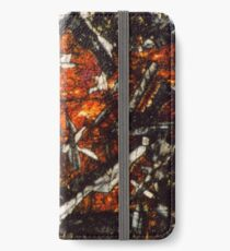Pyroxene Crystals 2 iPhone Wallet