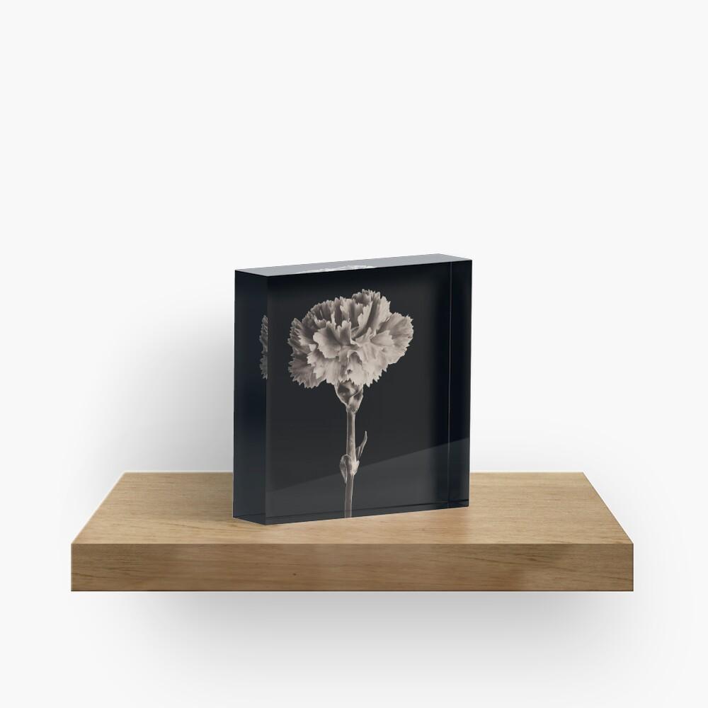 Antique Carnation Acrylic Block