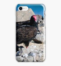 Newport Oregon - Protecting The Turkey Vulture iPhone Case/Skin