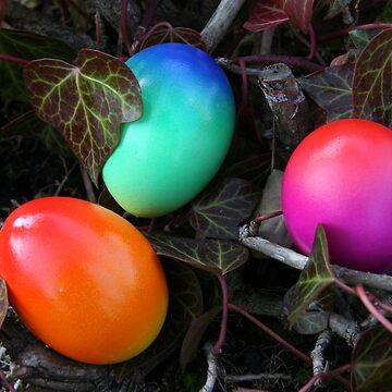 egg plant by photolia