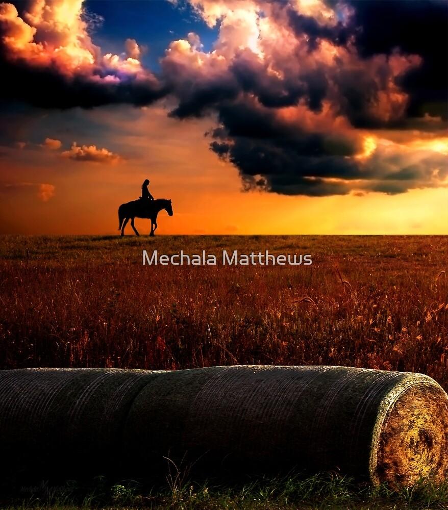 Silhouette by Mechala Matthews
