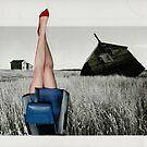 Dorothy Moderne by Susan Ringler