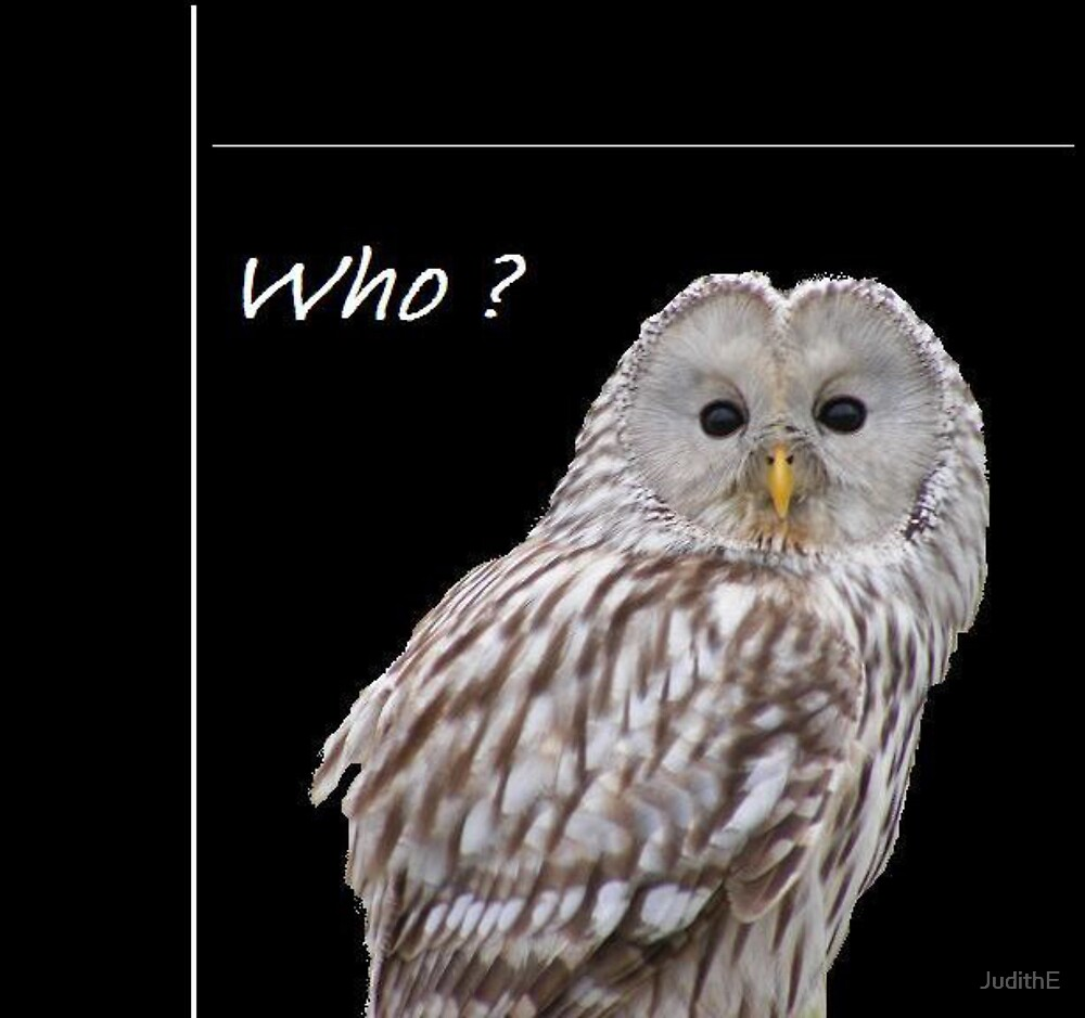 Who? ( just for fun) by JudithE