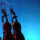 Nancy Kerr's fiddles by Marina Hurley