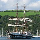 Rigged for Sail - Dartmouth by Mark Baldwyn