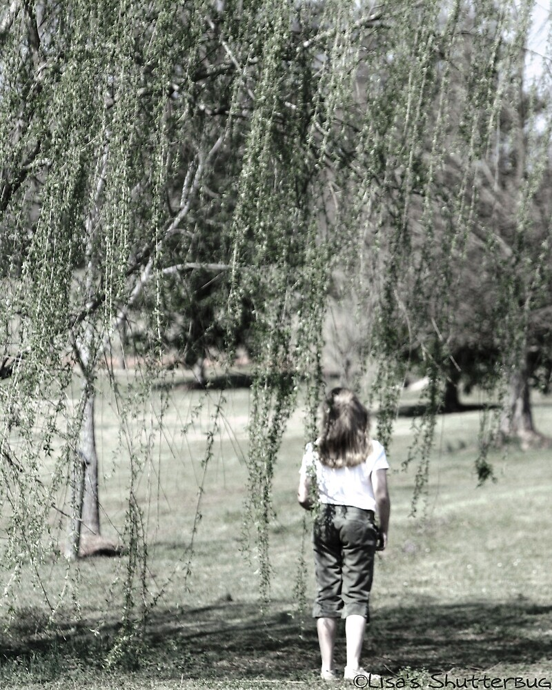 Willow by lisasshutterbug