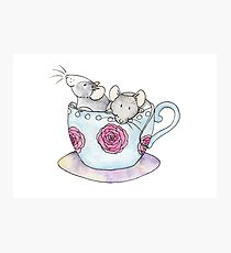 Time for tea rats in tea cup Photographic Print