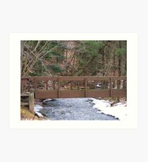 Woodland Trail Bridge Art Print